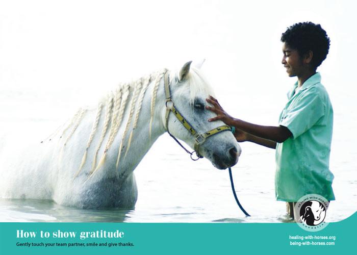 Healing with Horses Calendar 2016