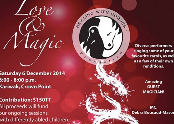 Love & Magic Christmas Concert