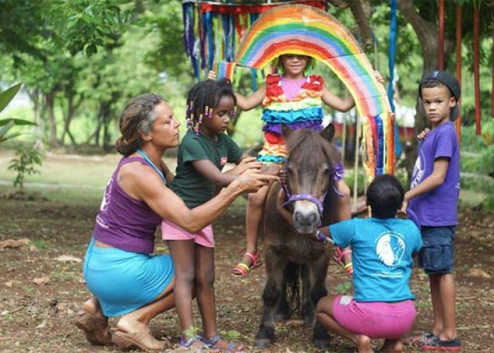 Healing With Horses Magical Playground